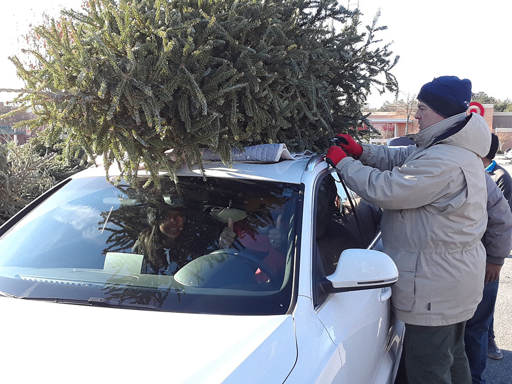 Recycle your Christmas Trees Saturday, Jan. 5