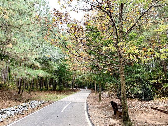 Johns Creek launches 'Map Our Trees' initiative