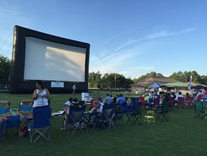 Movies at Newtown Park